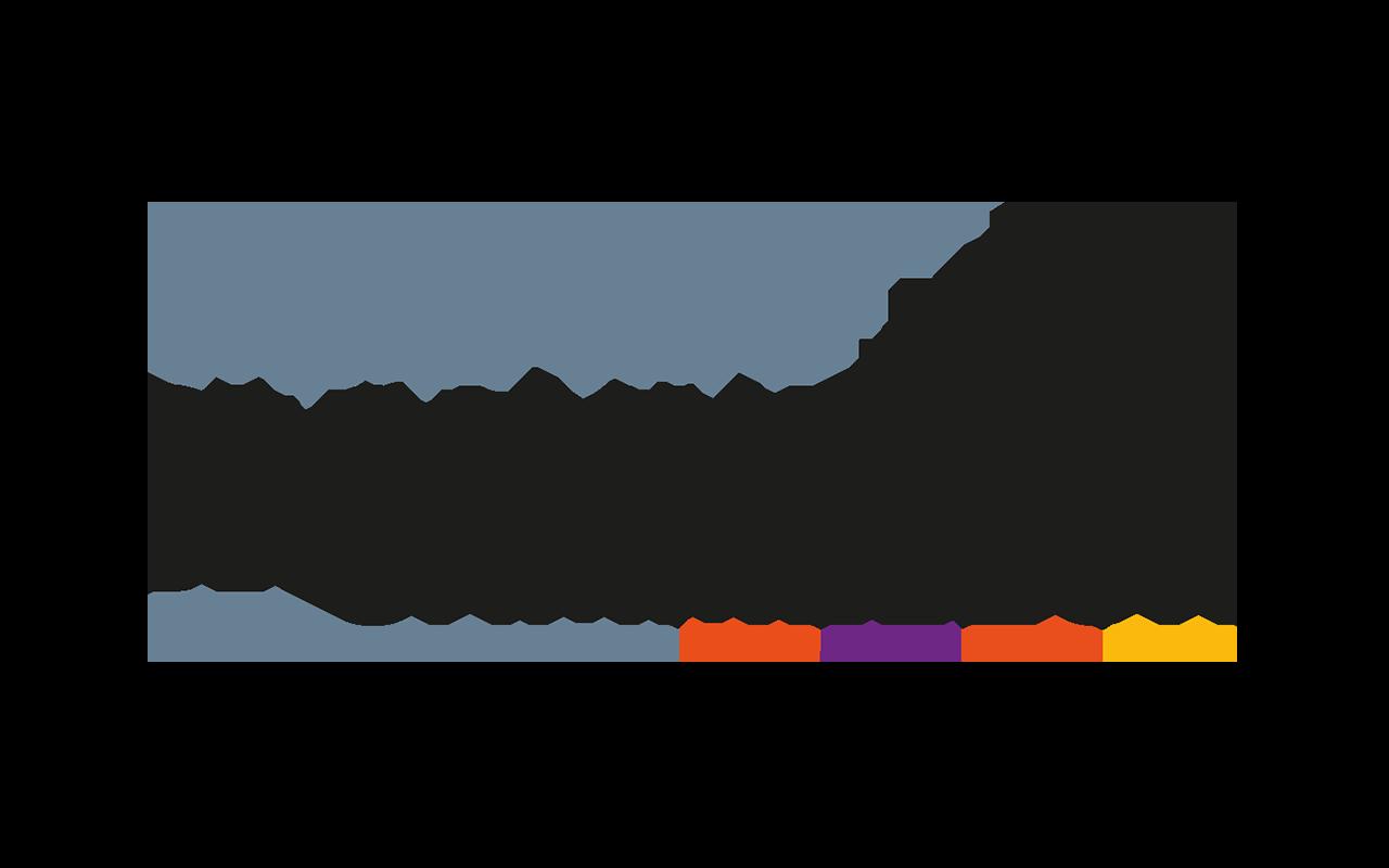 cammeleur_logo_nieuw